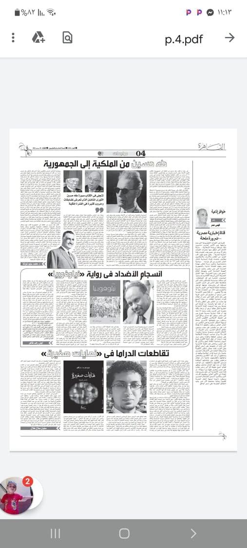 انسجام الأضداد في رواية نيلوفوبيا لـلروائي العالمي د. عمر فضل الله بقلم أيمن رجب